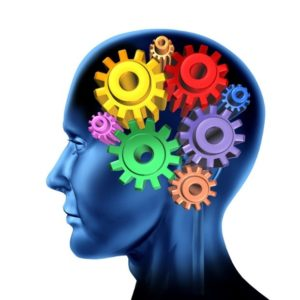 An image of a head with cogs and gears inside, conceptualizing the microlearning going on